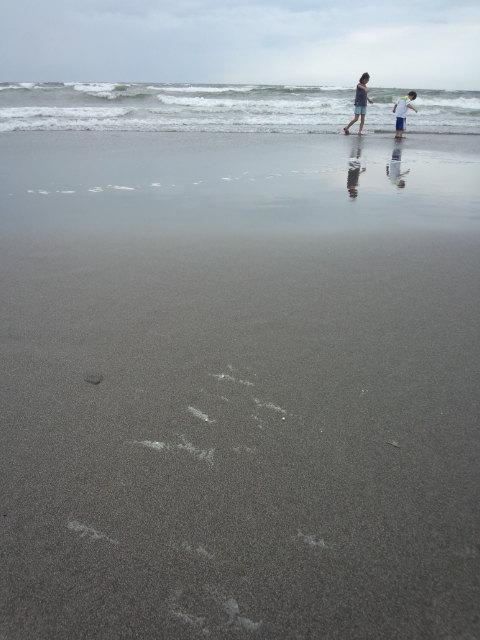 七里ガ浜を散歩